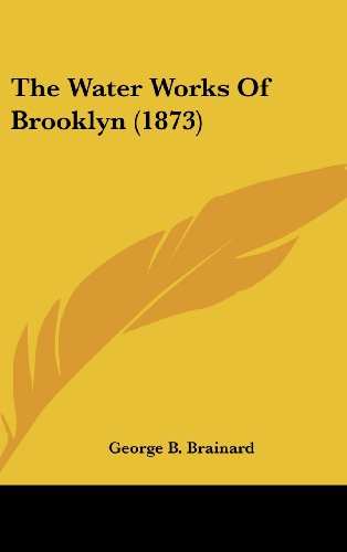 9781162022727: The Water Works of Brooklyn (1873)