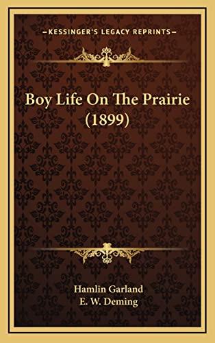 9781164792130: Boy Life On The Prairie (1899)