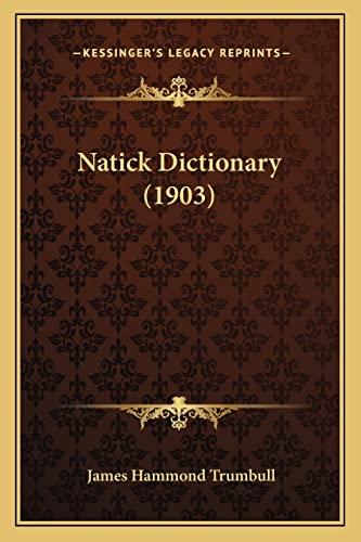 9781164929994: Natick Dictionary (1903)