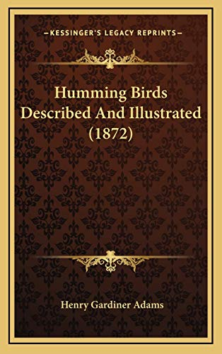9781166640583: Humming Birds Described and Illustrated (1872)