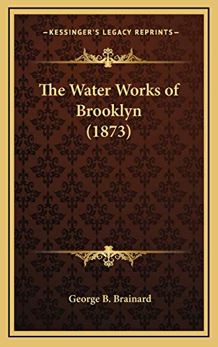 9781168700063: The Water Works of Brooklyn (1873)