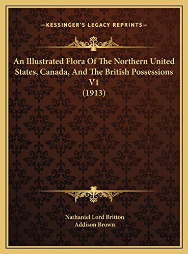9781169822627: An Illustrated Flora Of The Northern United States, Canada, And The British Possessions V1 (1913)