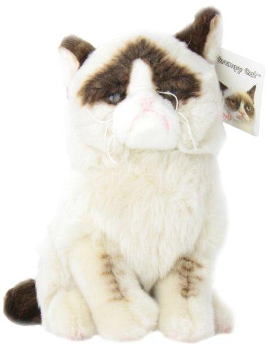 9781223069135: Grumpy Cat