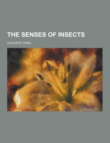 9781230218229: The Senses of Insects
