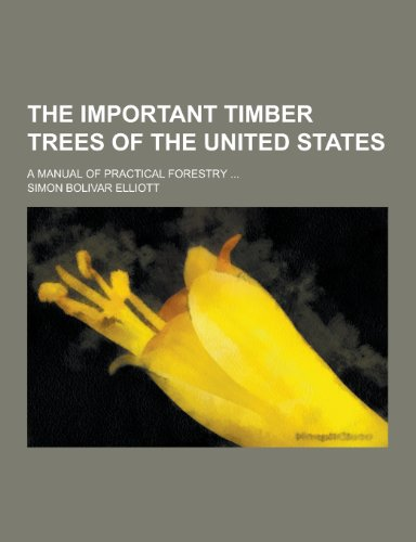 9781230275901: The Important Timber Trees of the United States; A Manual of Practical Forestry ...
