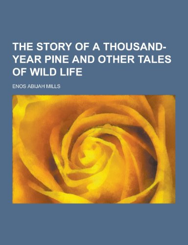 9781230329369: The Story of a Thousand-Year Pine and Other Tales of Wild Life