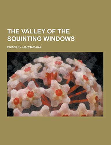 9781230409139: The Valley of the Squinting Windows
