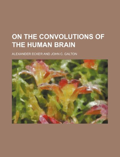 9781231303665: On the convolutions of the human brain