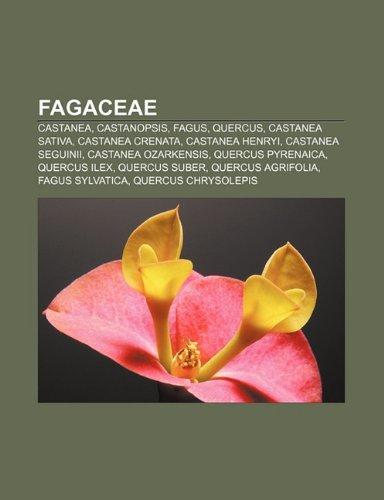 9781231392423: Fagaceae: Castanea, Castanopsis, Fagus, Quercus, Castanea sativa, Castanea crenata, Castanea henryi, Castanea seguinii, Castanea ozarkensis