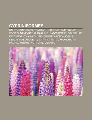 9781231622117: Cypriniformes: Balitoridae, Catostomidae, Cobitidae, Cyprinidae, Cobitis, Danio rerio, Barilius, Catostomus, Scardinius erythrophthalmus