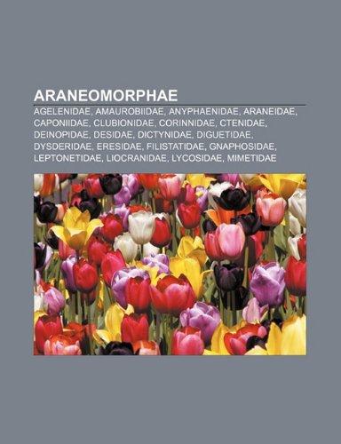 9781232412441: Araneomorphae: Agelenidae, Amaurobiidae, Anyphaenidae, Araneidae, Caponiidae, Clubionidae, Corinnidae, Ctenidae, Deinopidae, Desidae