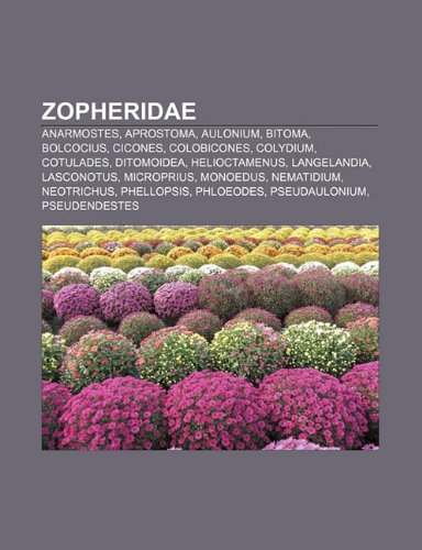 9781232479086: Zopheridae: Anarmostes, Aprostoma, Aulonium, Bitoma, Bolcocius, Cicones, Colobicones, Colydium, Cotulades, Ditomoidea, Helioctamen