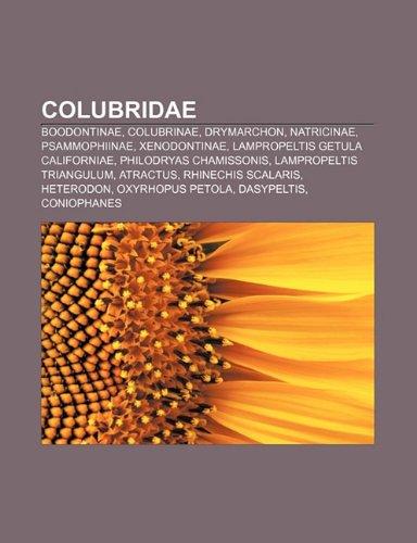 9781232495086: Colubridae: Boodontinae, Colubrinae, Drymarchon, Natricinae, Psammophiinae, Xenodontinae, Lampropeltis Getula Californiae