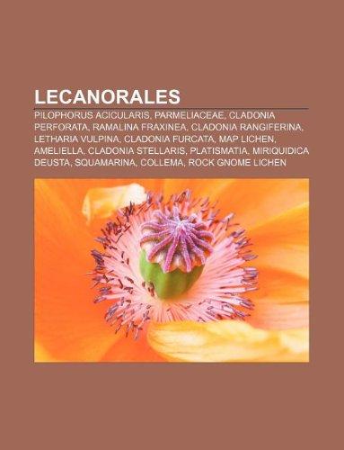 9781233061440: Lecanorales: Pilophorus acicularis, Parmeliaceae, Cladonia perforata, Ramalina fraxinea, Cladonia rangiferina, Letharia vulpina