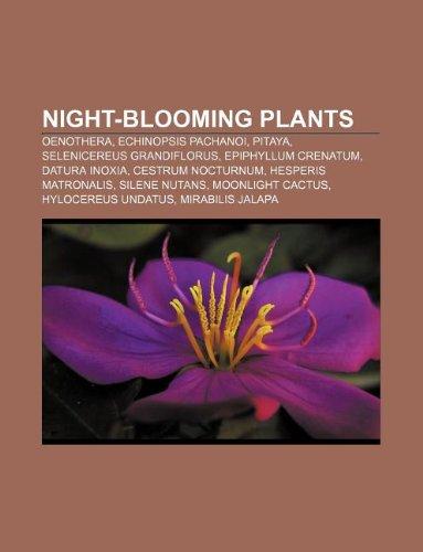9781233099214: Night-blooming plants: Oenothera, Echinopsis pachanoi, Pitaya, Selenicereus grandiflorus, Epiphyllum crenatum, Datura inoxia, Cestrum nocturnum