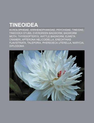 9781233107131: Tineoidea: Acrolophidae, Arrhenophanidae, Psychidae, Tineidae, Tineoidea Stubs, Evergreen Bagworm, Bagworm Moth, Thyridopteryx, W