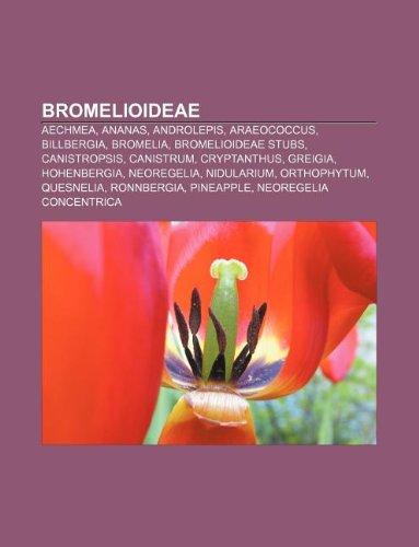 9781233275021: Bromelioideae: Aechmea, Ananas, Androlepis, Araeococcus, Billbergia, Bromelia, Bromelioideae Stubs, Canistropsis, Canistrum, Cryptant