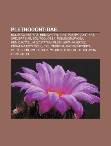 9781233302451: Plethodontidae: Bolitoglossinae, Hemidactyliinae, Plethodontinae, Spelerpinae, Bolitoglossa, Pseudoeurycea, Hemidactylium Scutatum