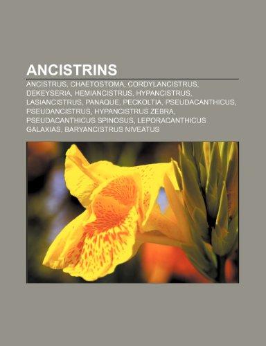9781233317981: Ancistrins: Ancistrus, Chaetostoma, Cordylancistrus, Dekeyseria, Hemiancistrus, Hypancistrus, Lasiancistrus, Panaque, Peckoltia