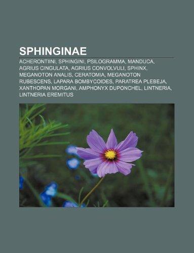 9781233896301: Sphinginae: Acherontiini, Sphingini, Psilogramma, Manduca, Agrius Cingulata, Agrius Convolvuli, Sphinx, Meganoton Analis, Ceratomi