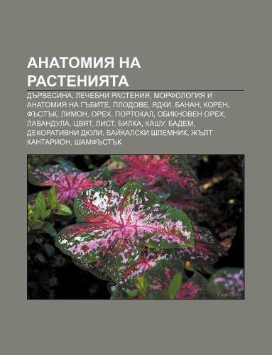 9781233983834: Anatomiya Na Rasteniyata: D Rvesina, Lechebni Rasteniya, Morfologiya I Anatomiya Na G Bite, Plodove, Yadki, Banan, Koren, F St K, Limon, Orekh