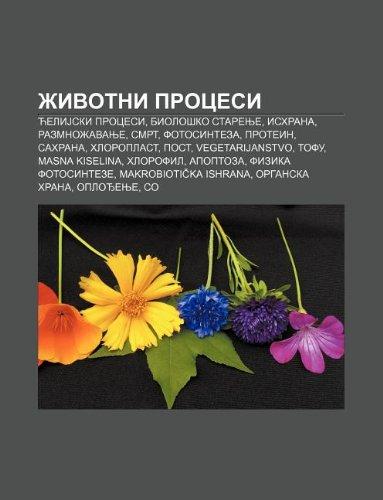 9781234010706: Ivotni Procesi: C Elijski Procesi, Biolo Ko Starenje, Ishrana, Razmno Avanje, Smrt, Fotosinteza, Protein, Sahrana, Hloroplast, Post