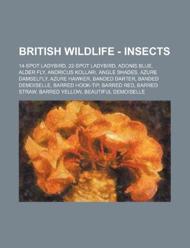9781234788896: British Wildlife - Insects: 14-Spot Ladybird, 22-Spot Ladybird, Adonis Blue, Alder Fly, Andricus Kollari, Angle Shades, Azure Damselfly, Azure Haw