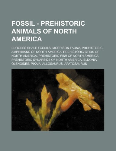 9781234838829: Fossil - Prehistoric Animals of North America: Burgess Shale Fossils, Morrison Fauna, Prehistoric Amphibians of North America, Prehistoric Birds of No