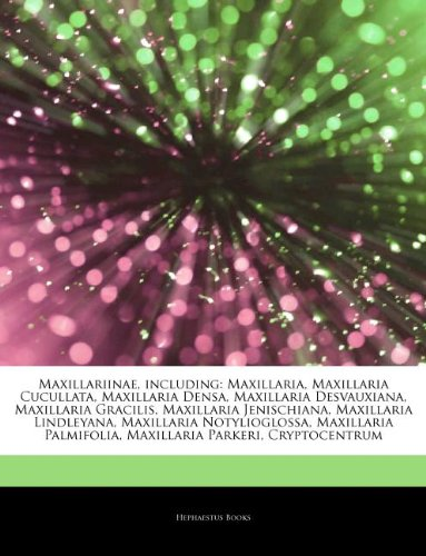 9781244692725: Articles on Maxillariinae, Including: Maxillaria, Maxillaria Cucullata, Maxillaria Densa, Maxillaria Desvauxiana, Maxillaria Gracilis, Maxillaria Jeni