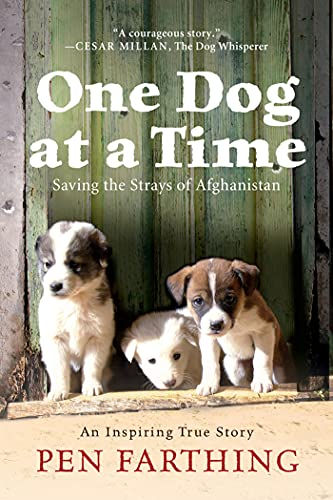 9781250001955: One Dog at a Time: Saving the Strays of Afghanistan