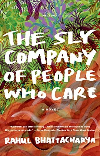 9781250007407: The Sly Company of People Who Care: A Novel