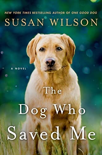 9781250014344: The Dog Who Saved Me: A Novel