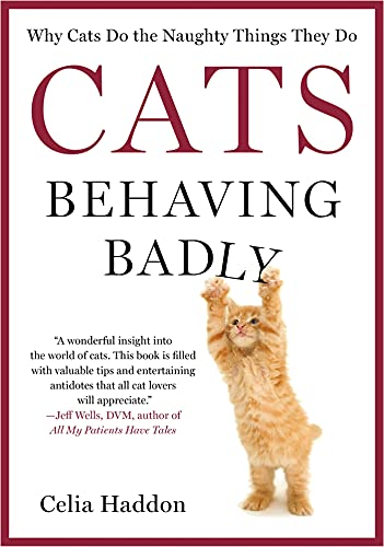 9781250028914: Cats Behaving Badly: Why Cats Do the Naughty Things They Do