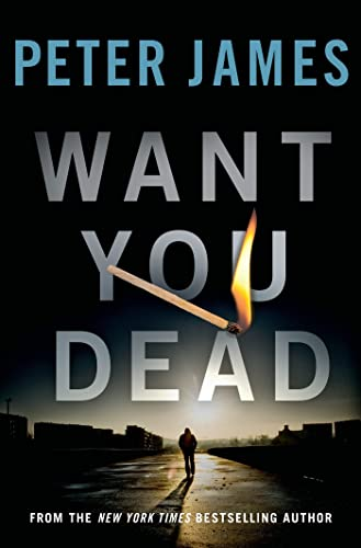 9781250030207: Want You Dead