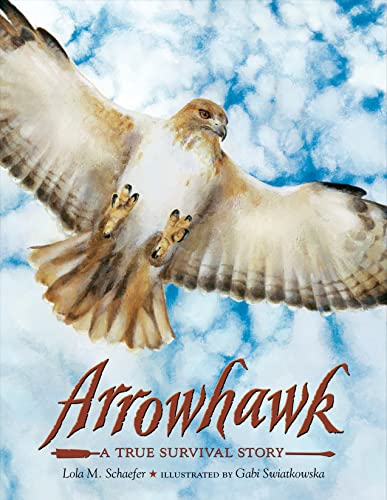 Arrowhawk: A True Survival Story: Schaefer, Lola M.