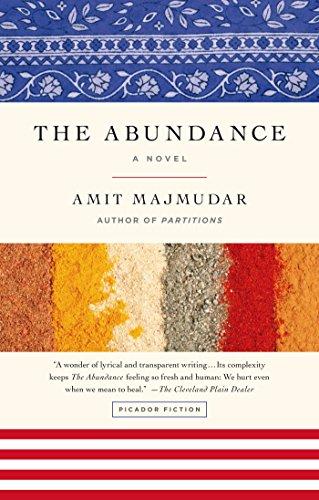 9781250045096: The Abundance: A Novel
