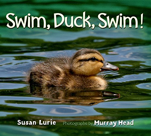 Swim, Duck, Swim!: Lurie, Susan