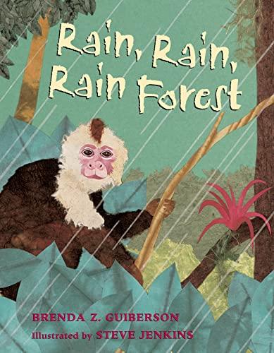 9781250056771: Rain, Rain, Rain Forest