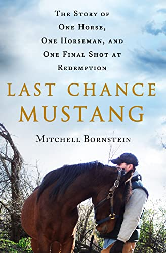 9781250059413: Last Chance Mustang: The Story of One Horse, One Horseman, and One Final Shot at Redemption