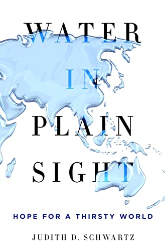 9781250069917: Water in Plain Sight: Hope for a Thirsty World