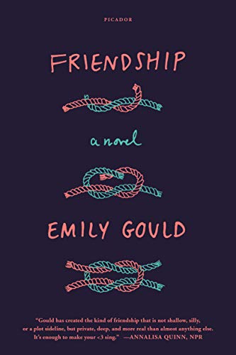 9781250070487: Friendship: A Novel