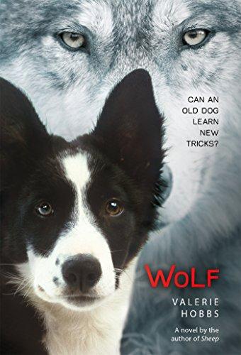 9781250073341: Wolf