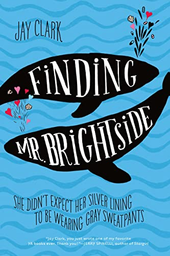 9781250073655: Finding Mr. Brightside