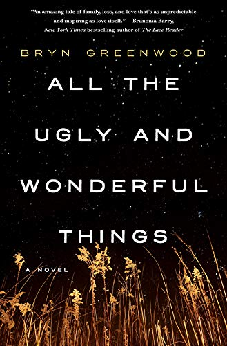 9781250074133: All the Ugly and Wonderful Things: A Novel