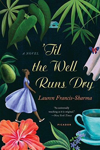 9781250074676: 'Til the Well Runs Dry: A Novel