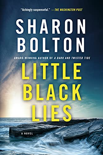 9781250080677: Little Black Lies: A Novel