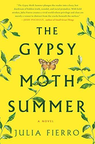 9781250087515: The Gypsy Moth Summer: A Novel