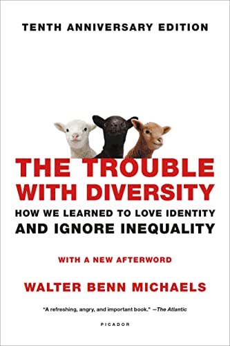 9781250099334: The Trouble with Diversity: How We Learned to Love Identity and Ignore Inequality