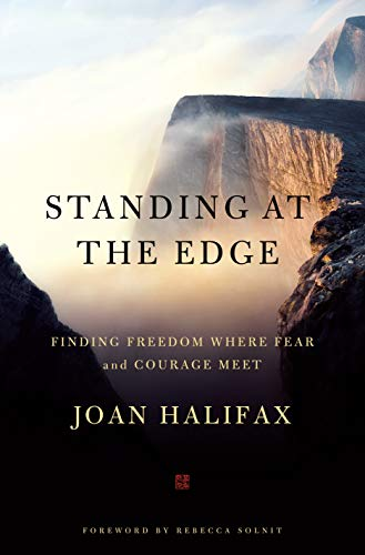 9781250101341: Standing at the Edge: Finding Freedom Where Fear and Courage Meet