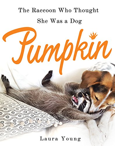 9781250108982: Pumpkin: The Raccoon Who Thought She Was a Dog